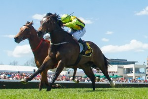 Unpretentious has registered as clear market mover for success in the 2014 McEwen Stakes