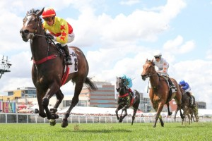 California Zimbol, above, cruises to win the Thoroughbred Club Stakes at Caulfield. Photo by Ultimate Racing Photos.
