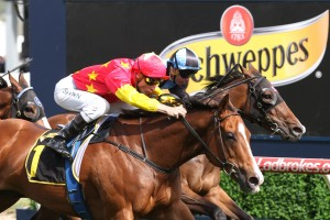 First Seal wins the 2016 Tristarc Stakes on Caulfield Cup Day