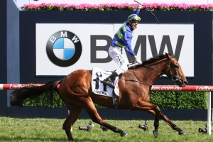 Naturalism Stakes Day 2017: Harlem Books Caulfield Cup Start