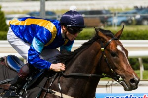It's A Dundeel is clear favourite for the 2014 Chipping Norton Stakes