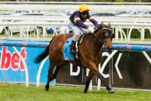 Rhythm To Spare has received a sprinkling of support at the lengthy 2013 Emirates Stakes odds of $19.