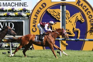 Stratum Star runs out a strong 2000m to win the David Jones Cup at Caulfield. Photo by Ultimate Racing Photos.