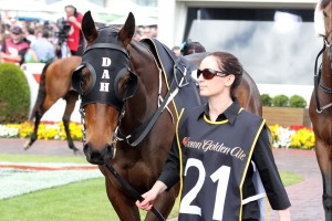 Unchain My Heart will set out to prove the naysayers wrong in the 2014 Melbourne Cup on Tuesday.