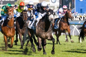 Fawkner has been charged with carrying 57kgs in the 2014 Melbourne Cup