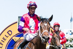 Dom Tourneur, above, has ridden Assertive Play to her two wins from two starts. Photo by Race Horse Photos Australia.