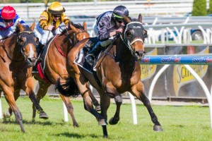 Red Tracer wins the Tristarc Stakes on Caulfield Cup Day