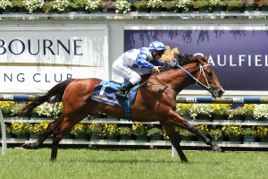 Hell Of An Effort will leave from barrier 1 in the 2016 Ladbrokes Blue Diamond Stakes on Saturday. Photo: Ultimate Racing Photos