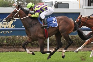 Jockey Craig Newitt is confident Teronado will find top gear in the 2014 Australian Derby
