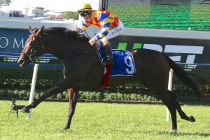 Kebede has been set for the 2016 Queensland Oaks this time. Photo: Daniel Costello