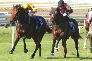 Perfect Dare (inside) will be ridden by Jim Byrne in Saturday's Listed Eye Liner Stakes at Ipswich. Photo: Daniel Costello