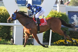 Robert Heathcote is hopeful that Buffering will record his maiden victory at Group 1 level in the Manikato Stakes at Moonee Valley on Friday.