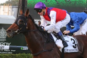 Our Ivanhowe is our tip to win the Group 1 Ranvet Stakes at Rosehill on Saturday. Photo: Daniel Costello