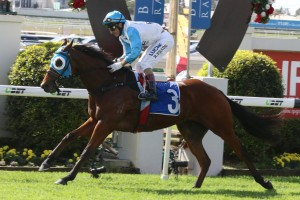 Straturbo was too good for his rivals in the Chief De Beers Quality at Doomben this afternoon. Photo: Daniel Costello