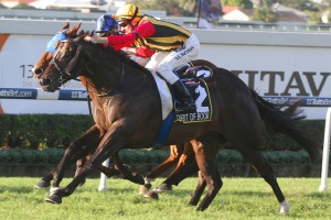 Spirit Of Boom is likely to carry a race-high weight in the 2014 Stradbroke Handicap