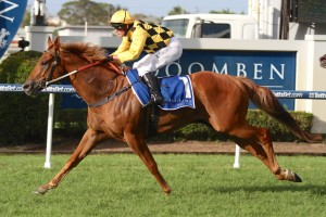After winning the Lough Neagh Stakes on Saturday, Big Money will be spelled ahead of the Brisbane Winter Carnival.