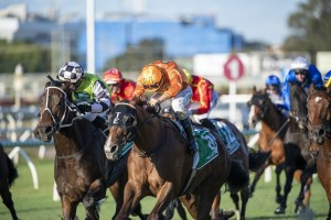 Tyzone, above in the orange colours, storms home to win the 2020 Stradbroke Handicap at Eagle Farm. Photo by Steve Hart.