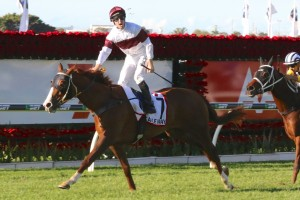 Eagle Way outstayed his competition to take out the 2016 Queensland Derby at Eagle Farm this afternoon. Photo by: Daniel Costello