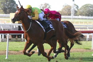 Fixation has charged home to win the 2014 Breakfast Creek Hotel Stakes
