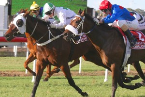 The Inventor has led from start to finish to win the 2014 Tattersall's Cup