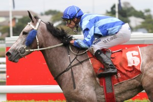 Natalie McCall is confident Lady Echelon can make amends for her recent form this Saturday in the Recognition Stakes.