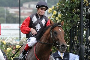 Convincible will begin his journey to a possible Australian Guineas run at Flemington on Saturday.