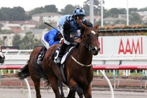 Flemington winner Ragazzo Del Corsa will head to the $1 million Blue Diamond Stakes on February 28.