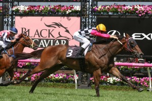 Ken's Dream returned to winning form at Flemington on Saturday afternoon. Photo by: Ultimate Racing Photos