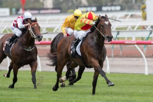 Lankan Rupee never looked in doubt in this afternoon's Black Caviar Lightning Stakes. Photo: Sarah Ebbett