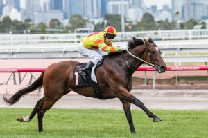 Lankan Rupee could race beyond 1200m for the first time during the Brisbane Winter Carnival.