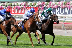 Bring Me The Maid has been confirmed for an appearance in this weekend's Group 2 Magic Night Stakes