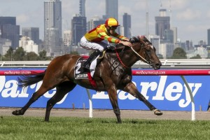 Lankan Rupee scores his second straight Group 1 victory with an ultra impressive performance in the Newmarket Handicap at Flemington this afternoon.