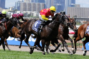 Zululand has claimed the Group 2 VRC Sires' Produce Stakes at Flemington