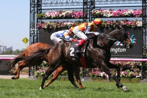 Demonstrate, above, wins the first race on Super Saturday at Flemington. Photo by Ultimate Racing Photos.