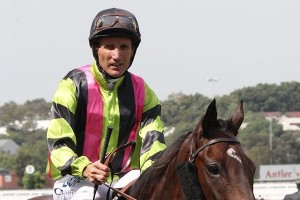 Damien Oliver (pictured here on Suavito)