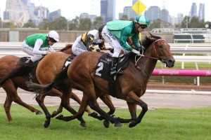 2018 Blamey Stakes Winner Humidor onto Doncaster Mile