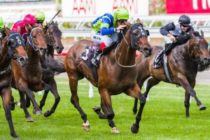 Churchill Dancer will likely head to the Standish Handicap on January 1 after winning at Flemington on Saturday.