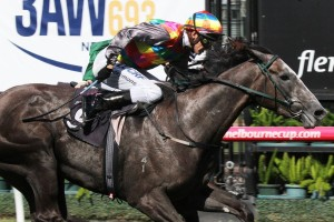 Luke Oliver is hopeful Kansas Sunflower will progress into a serious Australasian Oaks chance. Photo: Adrienne Bicknell