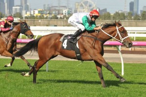 Life Less Ordinary produces great Doomben Cup trial with A.D. Hollindale Stakes win