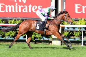 I Am A Star is favourite in 2016 Moonee Valley Fillies' Classic betting markets. Photo: Ultimate Racing Photos