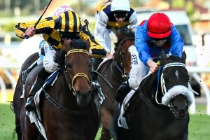 Ancient King (inside) is featured among the final field for the Bendigo Cup this Wednesday.