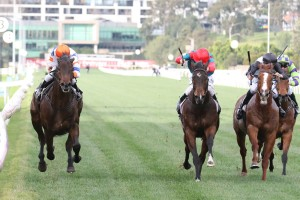 Hey Doc, above in orange cap. had a nose to spare over Cannyescent, red cap, in winning the Aurie's Star Handicap[ at Flemington. Photo by Ultimate Racing Photos.
