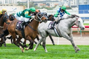Puissance De Lune will be geared towards the Group 1 Makybe Diva Stakes this spring