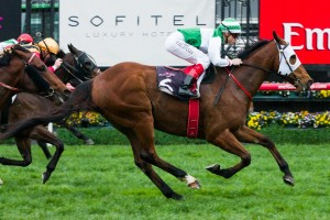 Colin Scott is confident Speediness can return to the winner's circle in the Sandown Stakes as long as the ground is cut.