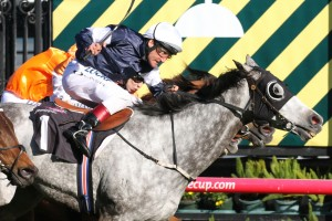 Fawkner is our pick to take out Saturday's Group 1 Underwood Stakes at Caulfield. Photo: Ultimate Racing Photos