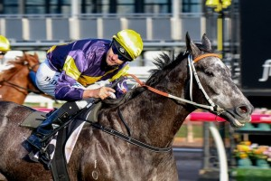 Chautauqua is the punters pick to take out the Gilgai Stakes at Flemington.