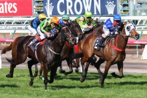 Commanding Jewel wins back-to-back Let's Elope Stakes