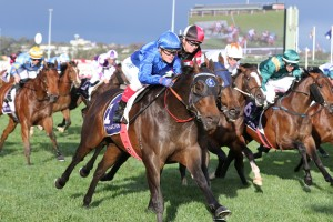Encryption, above in royal blue colours, wins the Danehill Stakes at Flemington. Photo by  Ultimate Racing Photos..