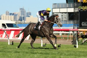 Chautauqua is set for a racing return in Saturday's Group 2 Rubiton Stakes. Photo: Race Horse Photos Australia