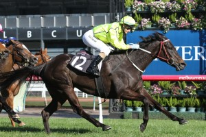 La Passe's impressive Blazer Stakes victory may warrant a berth in the Group 1 Myer Classic. Photo: Ultimate Racing Photos